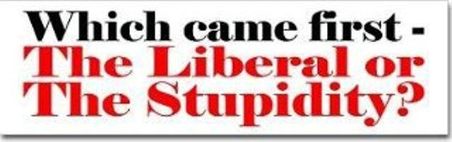 Liberal-or-Stupid